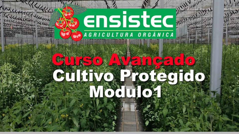Curso Avançado de Cultivo protegido – Manejo de Irrigação e Nutrição –  Manejo de irrigação e nutrição em ambiente protegido